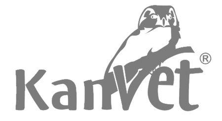 logotyp-kanvet_szary