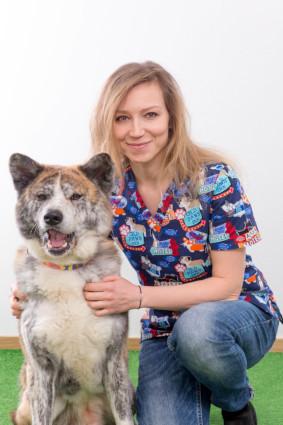 Laseroterapia dla zwierząt, Zoofizjoterapia