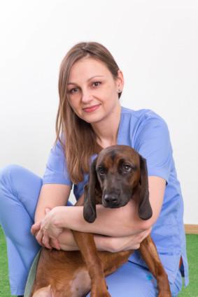 lekarz weterynarii Trójmiejska Klinika Weterynaryjna